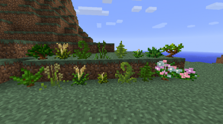 Temperate Plants 1.6.2